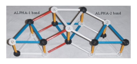 ZOME model of the lithium6 nucleus  the alpha-1 bonds are show with red struts                     and  the alpha-2 bonds are show with white struts